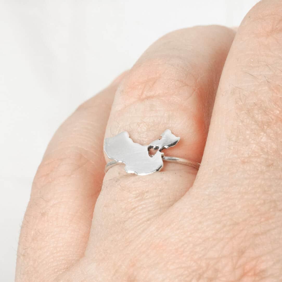 detail of china ring