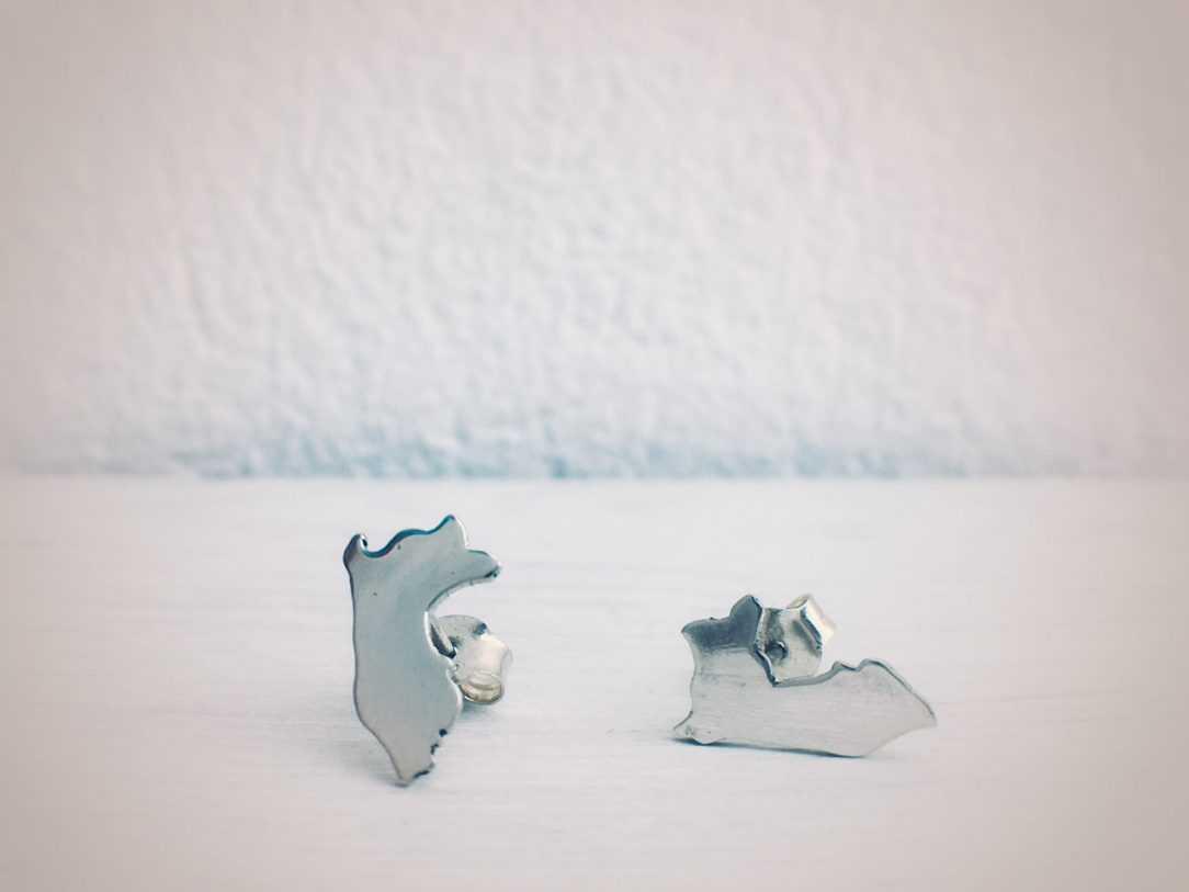 Peru Earrings in silver